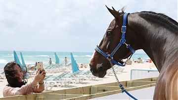 Top Team Combinations Revealed for GCL Miami Beach