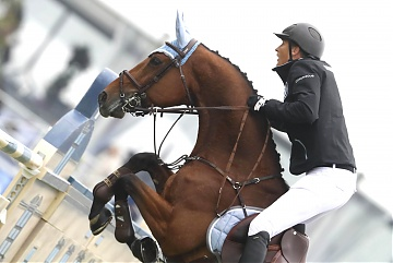 GCL of Chantilly - Antwerp Diamonds - Marc Houtzager on Sterrehof's Calimero